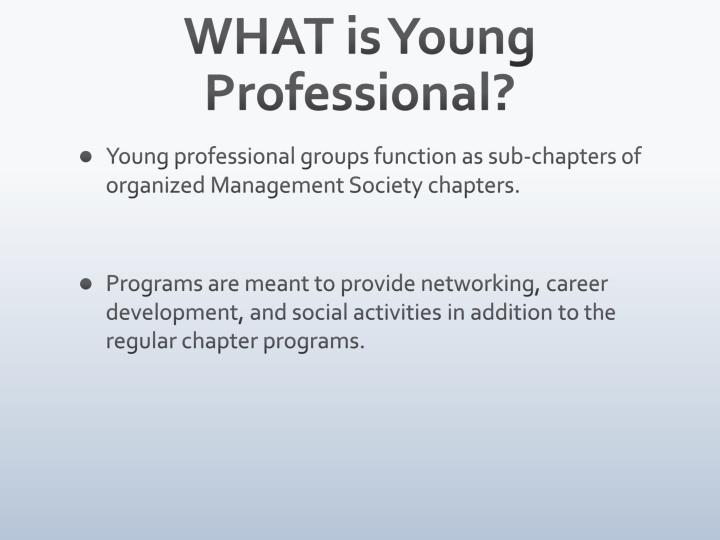 WHAT is Young Professional?