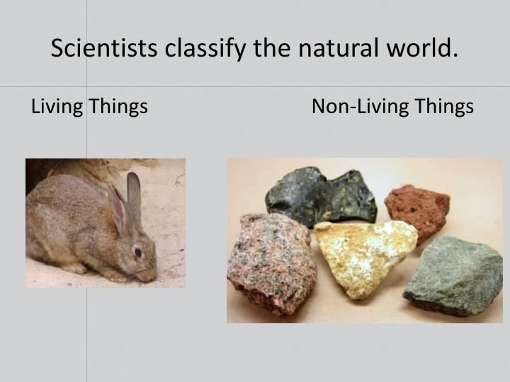 Scientists classify the natural world.