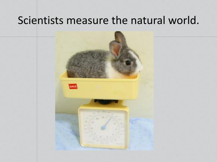 Scientists measure the natural world.