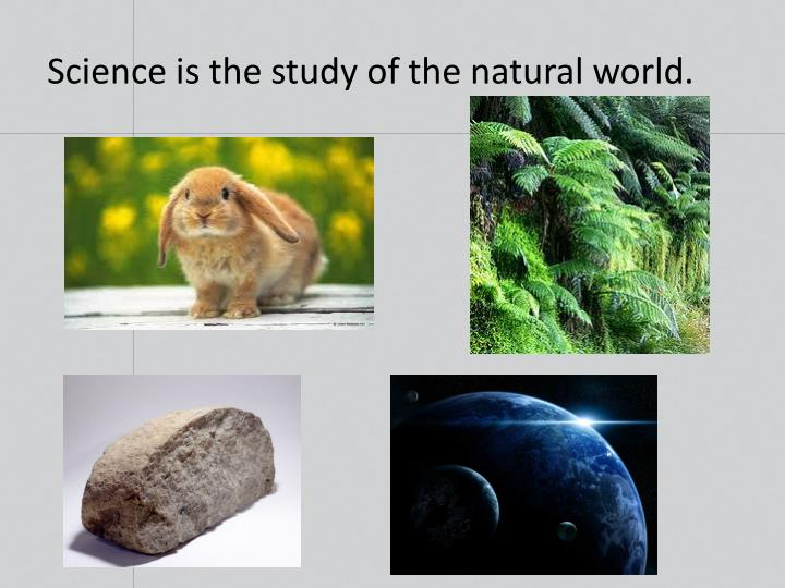 Science is the study of the natural world.