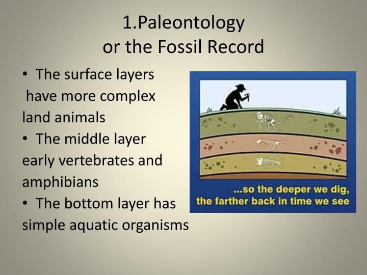 1 paleontology or the fossil record