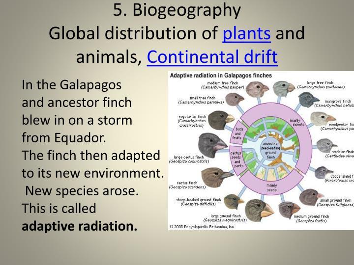 5. Biogeography