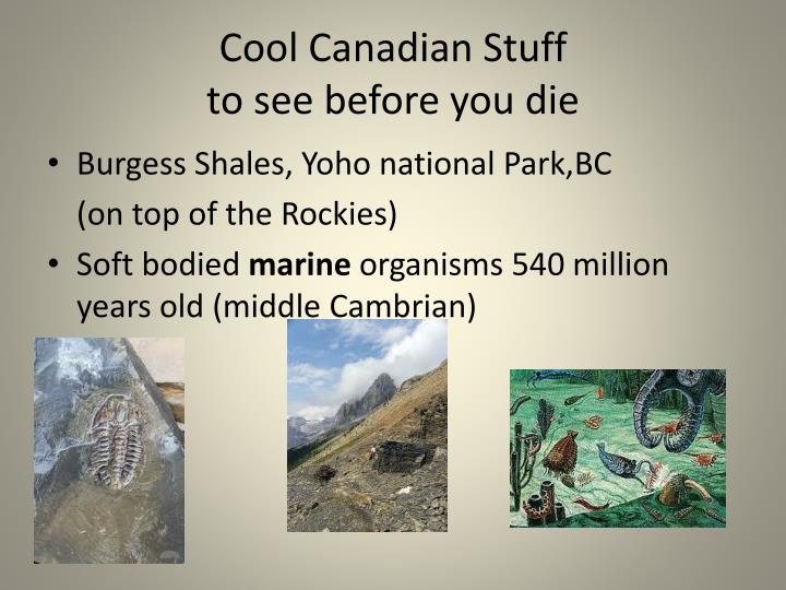 Cool Canadian Stuff
