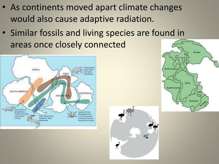 As continents moved apart climate changes would also cause adaptive radiation