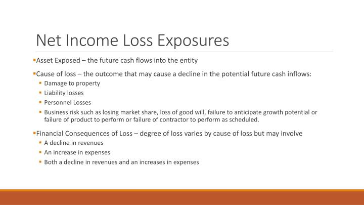 Net Income Loss Exposures