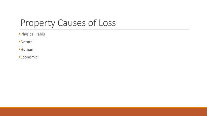 Property Causes of Loss