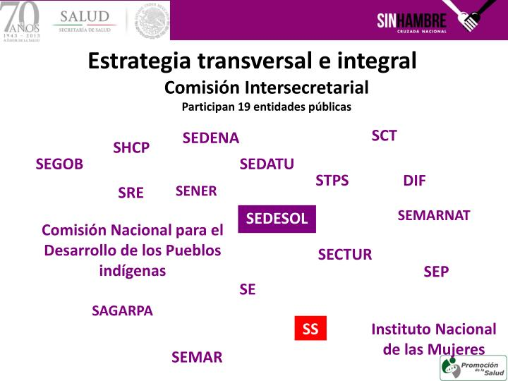 Estrategia transversal e integral