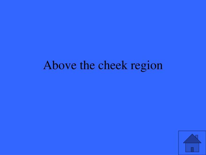 Above the cheek region
