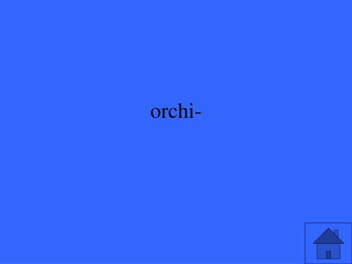 orchi-