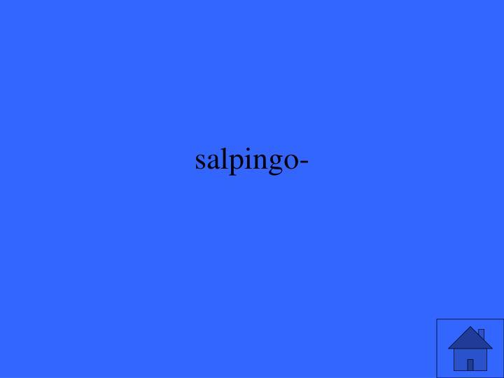 salpingo-
