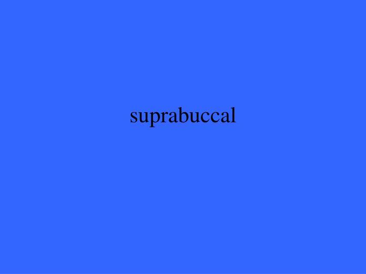 suprabuccal
