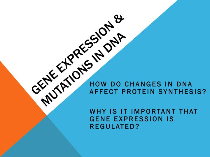 Gene expression mutations in dna