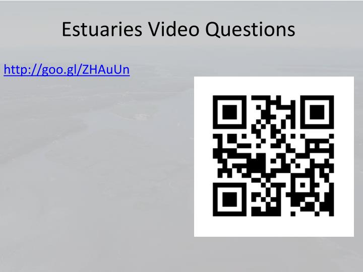 Estuaries Video Questions