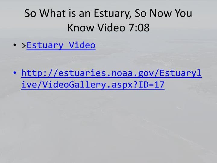 So What is an Estuary, So Now You Know Video 7:08