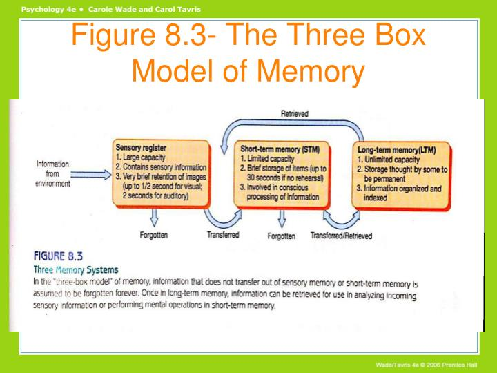 Figure 8.3- The Three Box Model of Memory