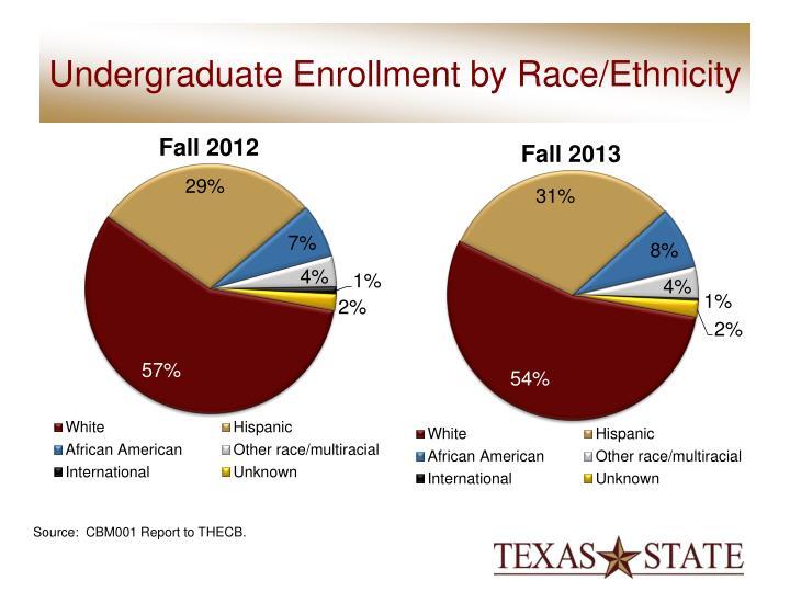 Undergraduate Enrollment by Race/Ethnicity