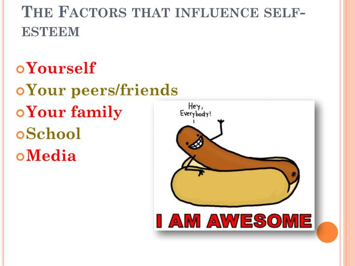 The Factors that influence self-esteem