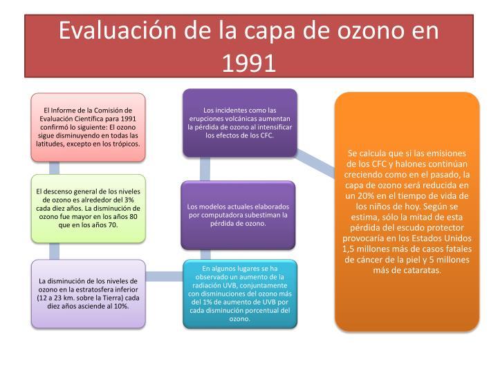 Evaluación de la capa de ozono en 1991