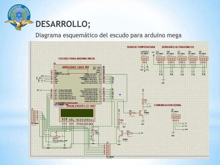 DESARROLLO;