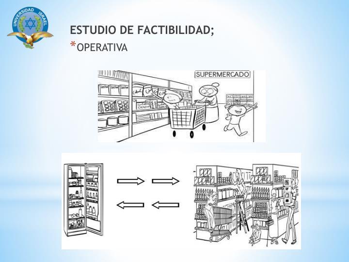 ESTUDIO DE FACTIBILIDAD;