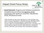 impact grant focus areas1