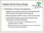 impact grant focus areas3