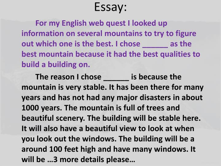 Essay:
