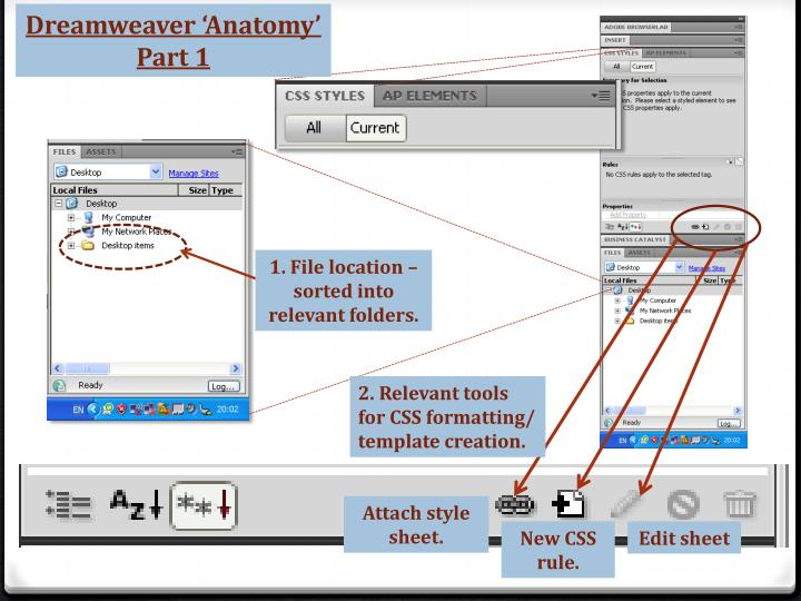 Dreamweaver 'Anatomy'