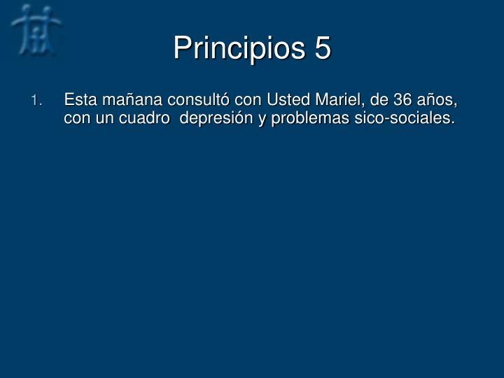 Principios 5