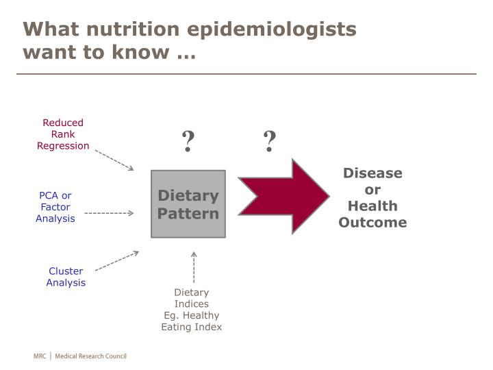 What nutrition epidemiologists