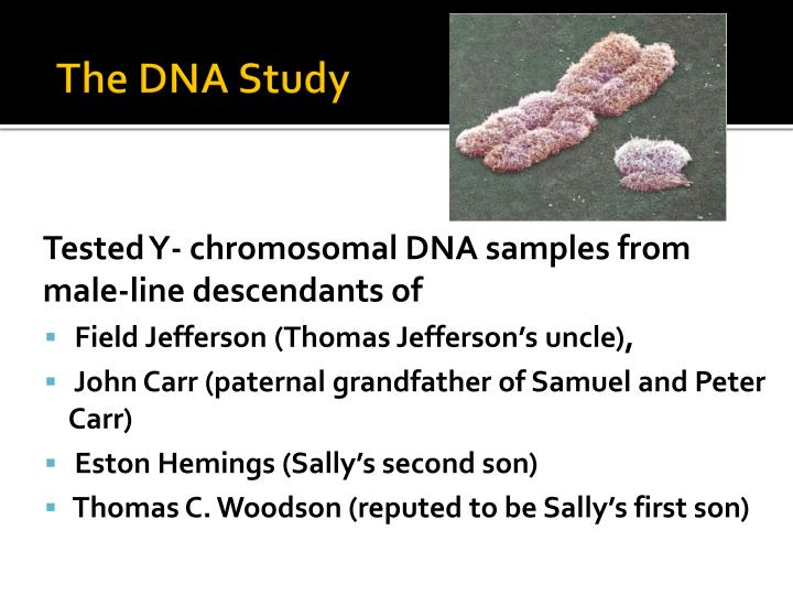 The DNA Study