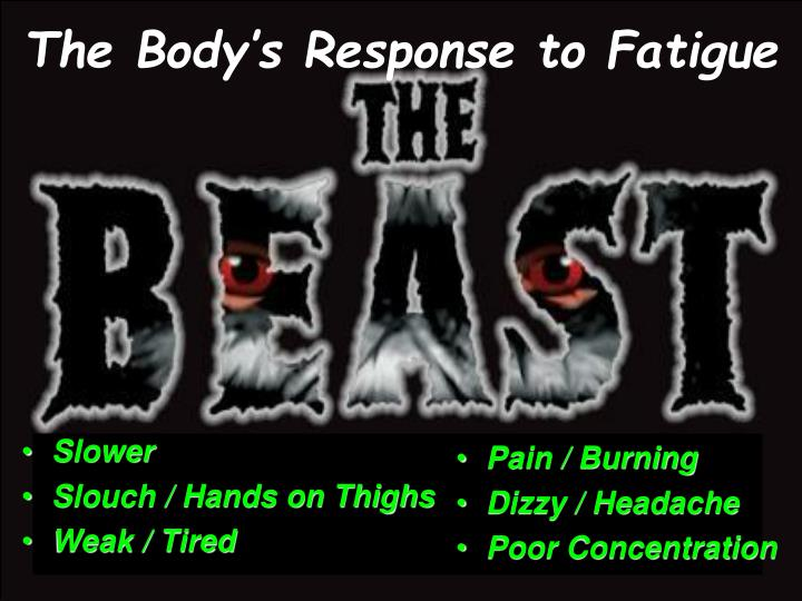 The Body's Response to Fatigue