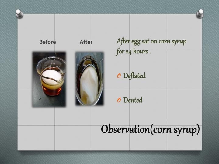 Observation(corn syrup)