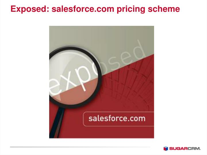 Exposed: salesforce.com pricing scheme