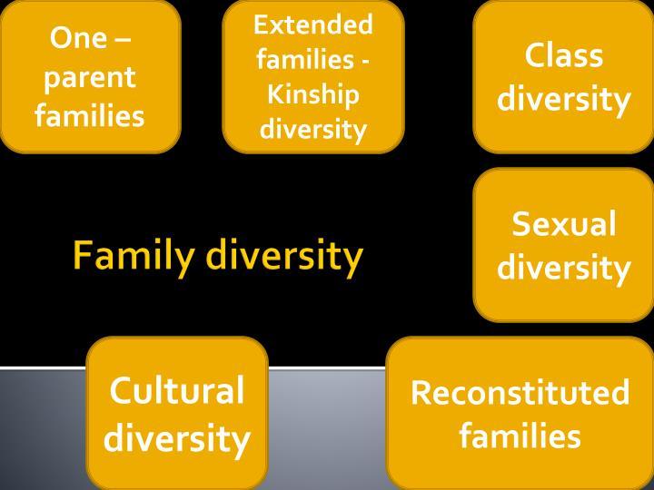 One – parent families