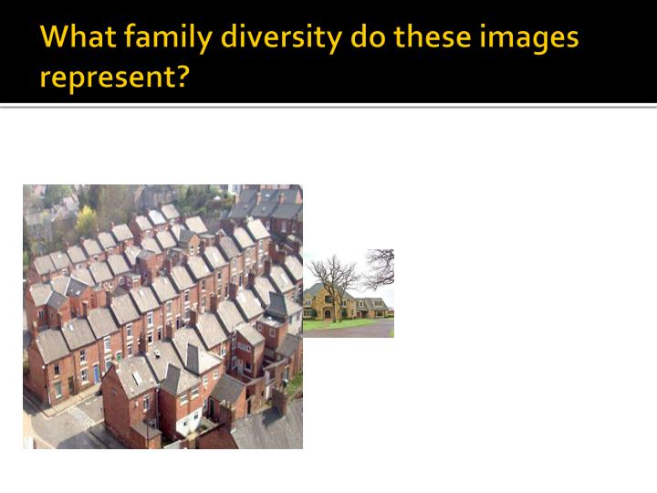 What family diversity do these images represent?