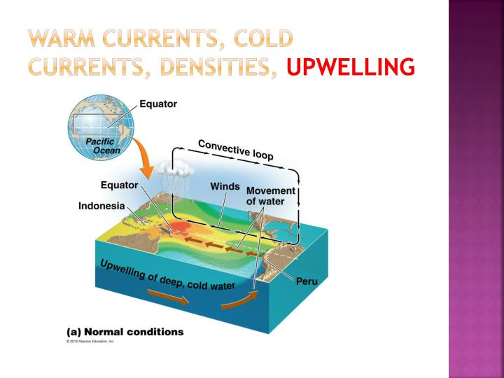 WARM CURRENTS, COLD CURRENTS, DENSITIES,
