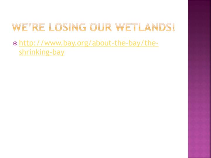 we're losing our wetlands!