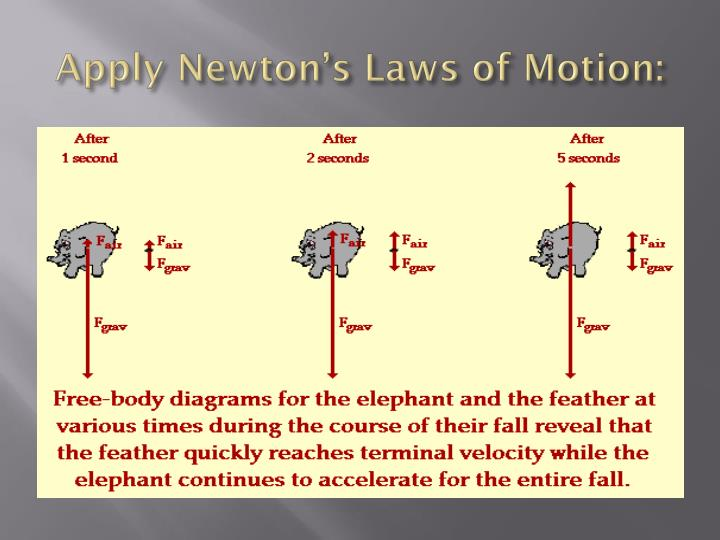Apply Newton's Laws of Motion: