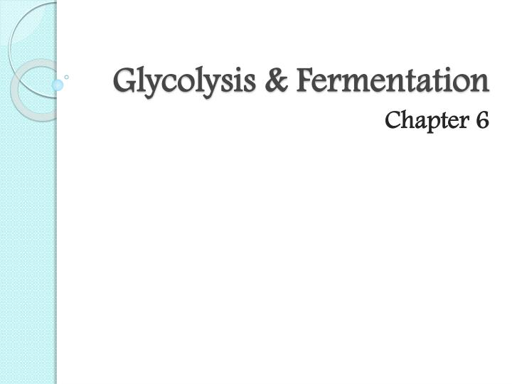 Glycolysis fermentation