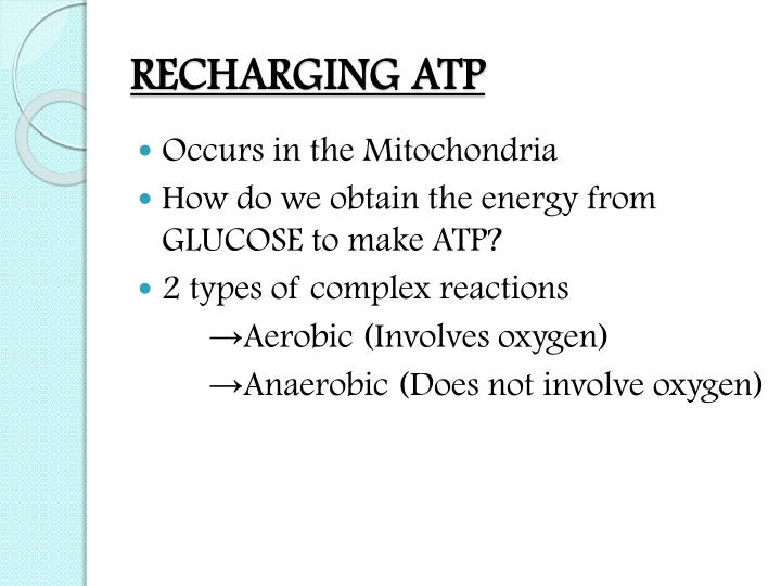 RECHARGING ATP