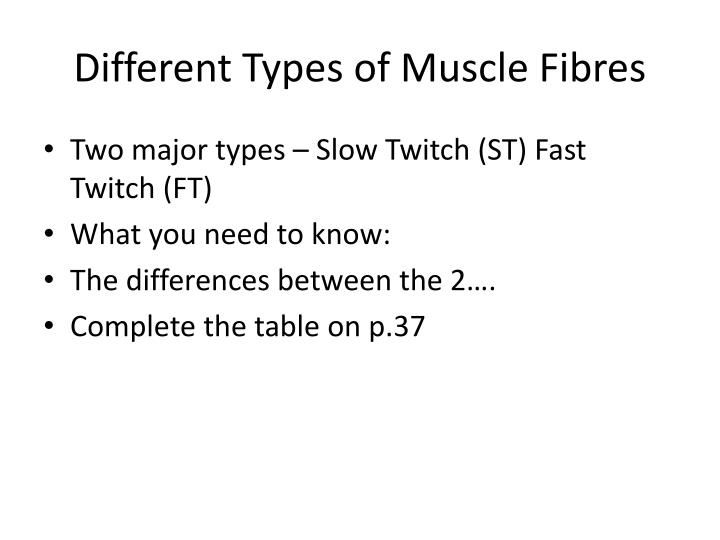 fast and slow twitch fibres coloring pages | PPT - Structure and Function PowerPoint Presentation - ID ...
