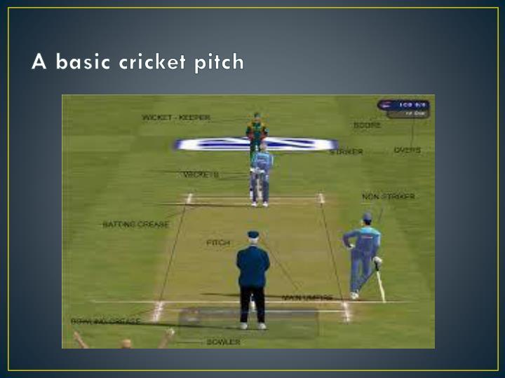 A basic cricket pitch