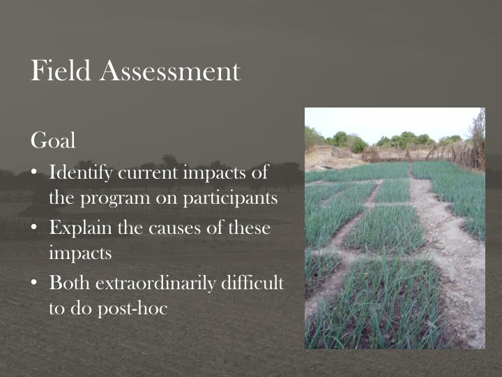 Field Assessment