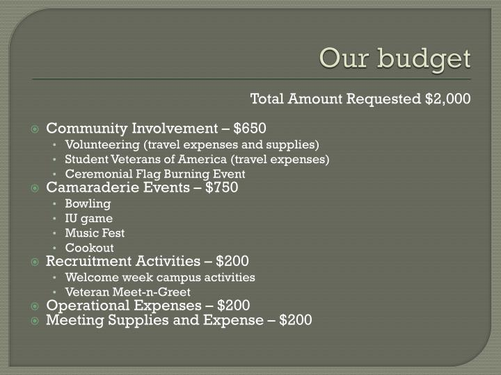 Our budget
