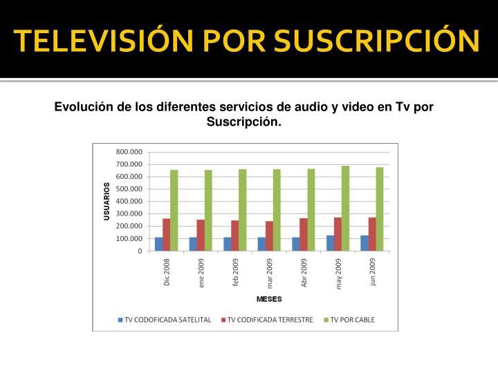 TELEVISIÓN POR SUSCRIPCIÓN