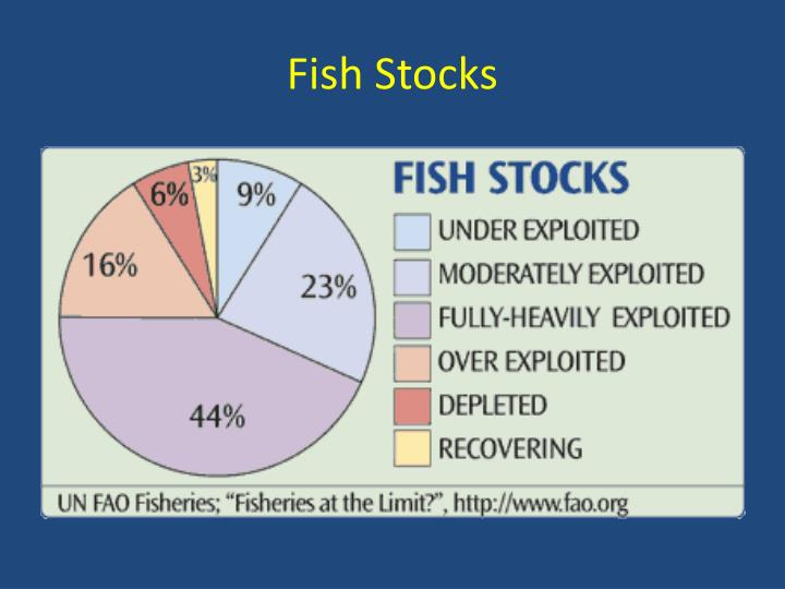 Fish Stocks