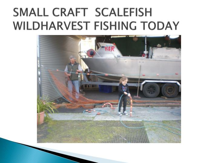 Small craft scalefish wildharvest fishing today