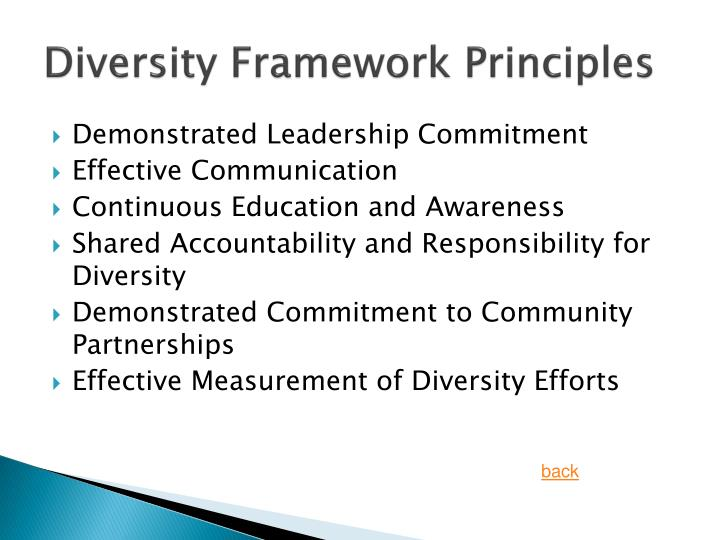 Diversity Framework Principles