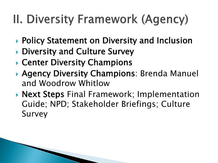 II. Diversity Framework (Agency)